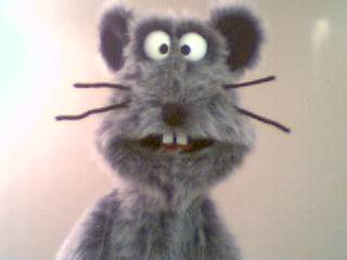 Cheddar the Rat puppet - Click to see more Gray Puppets!